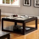 Furniture of America CM4484SQ