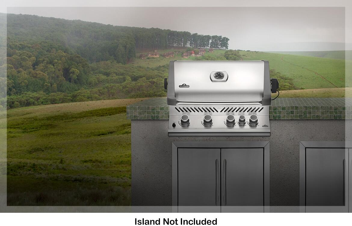 Napoleon bip500rbnss2 31 inch stainless steel built in grill napoleon prestige main image napoleon prestige installation view fandeluxe Choice Image
