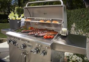 American Outdoor Grill 24PCD