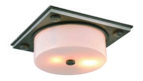 Elegant Lighting 1480F13VN