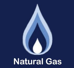 FUEL-NG Natural Gas Option......