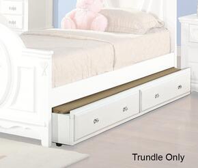 Acme Furniture 01683TRN