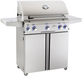 American Outdoor Grill 30PCLR
