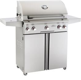 American Outdoor Grill 30NCT00SP