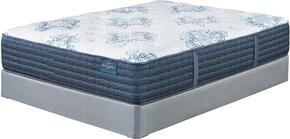 Mt. Dana Firm Collection M78731-M81X32 Queen Mattress Set with Mattress and Foundation