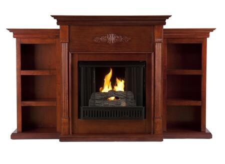 Holly & Martin 37104031920  Fireplace