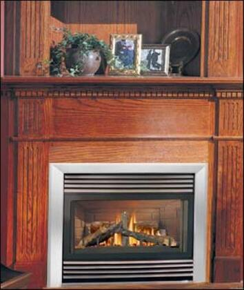 Napoleon GD34NT  Direct Vent Natural Gas Fireplace
