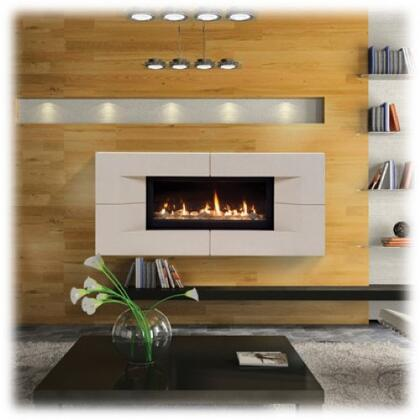 Majestic WDV500PTSC Echelon Series Wall Mountable Direct Vent Liquid Propane Fireplace