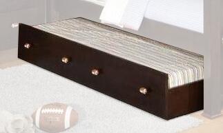 Acme Furniture 12009