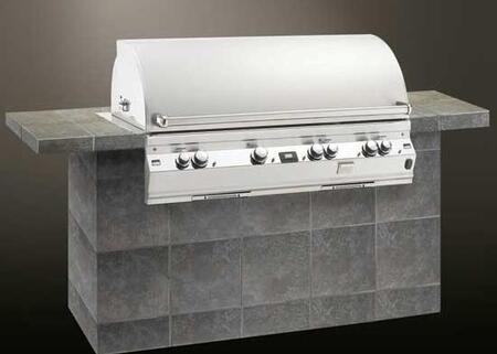 FireMagic E1060I2E1N Built In Natural Gas Grill