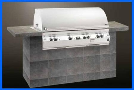 FireMagic E1060I2L1P Built In Liquid Propane Grill