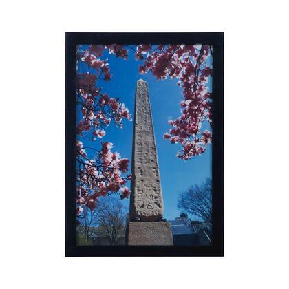 Dimond Central Park 7011 1096