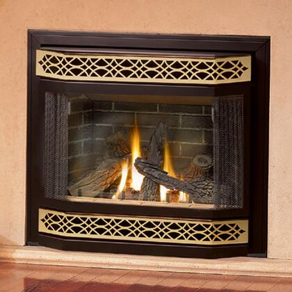 Napoleon GD36NTRE  Direct Vent Natural Gas Fireplace
