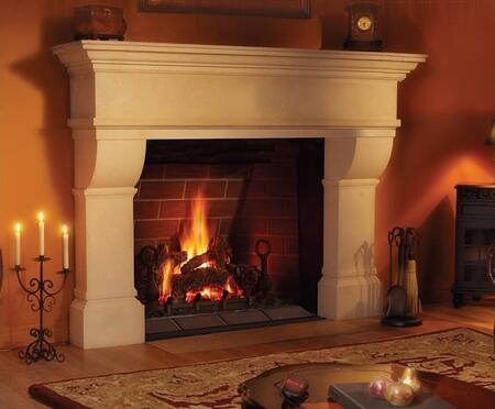 Napoleon GD80NT1ME  Direct Vent Natural Gas Fireplace