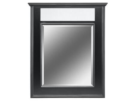 Stein World 12454  Rectangular Portrait Wall Mirror