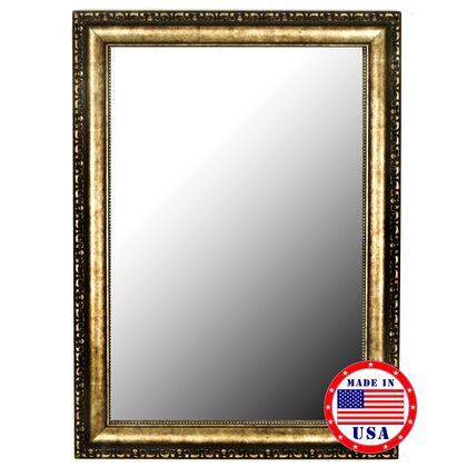 Hitchcock Butterfield 81070X 2nd Look Tibetan Silver-Aged Gold Framed Wall Mirror