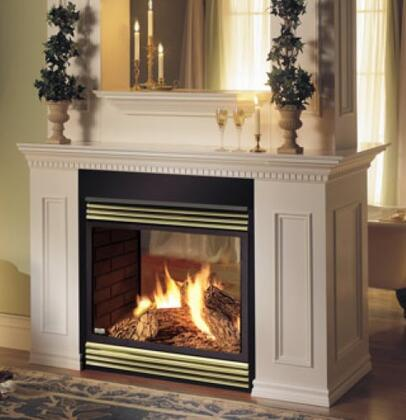 Napoleon BGD40N2E  Direct Vent Natural Gas Fireplace