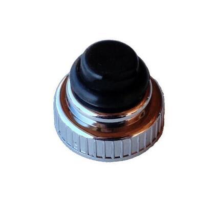 Ignitor Button