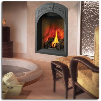 Napoleon GD82NTPA  Direct Vent Natural Gas Fireplace