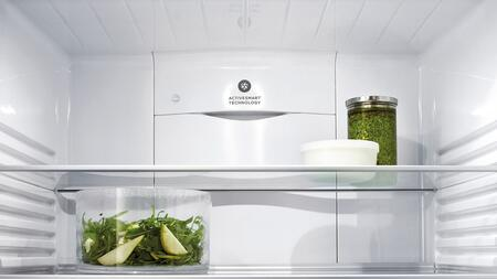 """Fisher Paykel RF170WDX 32"""" Counter Depth Bottom Freezer Refrigerator with 17.1 Cu. Ft. Capacity, 4 Shelves, ActiveSmart Technology, LED Lighting, and Energy Star Qualified in Stainless Steel (X Hand Hinge)"""