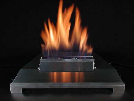 Alterna AFM20RENSS  Natural Gas Fireplace