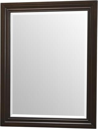 Lifestyle Solutions 420PMFRTC  Rectangular Portrait Wall Mirror