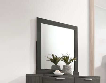 Acme Furniture Lantha Mirror