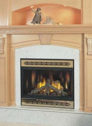 Napoleon BGD42ND  Direct Vent Natural Gas Fireplace