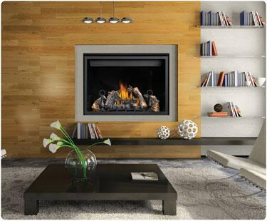 Napoleon HD46NT Wall Mountable Direct Vent Natural Gas Fireplace |Appliances Connection