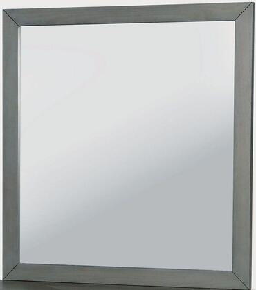 Furniture of America CM7386GYM Lennart Series  Mirror