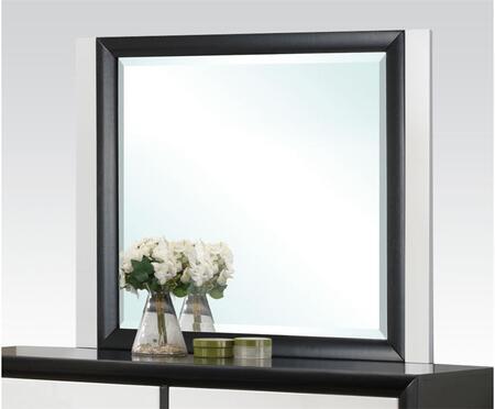Acme Furniture 20614  Mirror