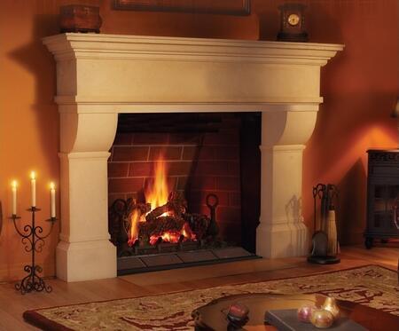 Napoleon GD80PT1ME  Direct Vent Liquid Propane Fireplace