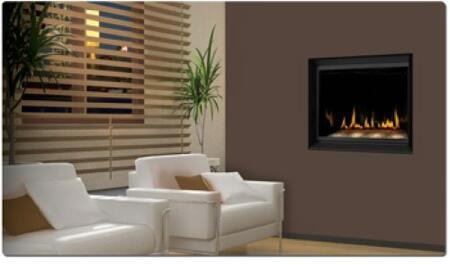 Napoleon BGD36CFGN Wall Mountable Direct Vent Natural Gas Fireplace